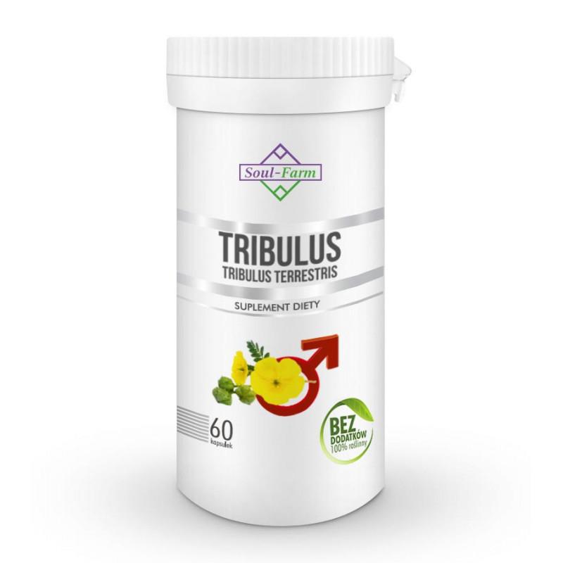 TRIBULUS TERRESTRIS EKSTRAKT 8:1, 40% saponin steroidowych, 60 kapsułek PREMIUM / Soul-Farm
