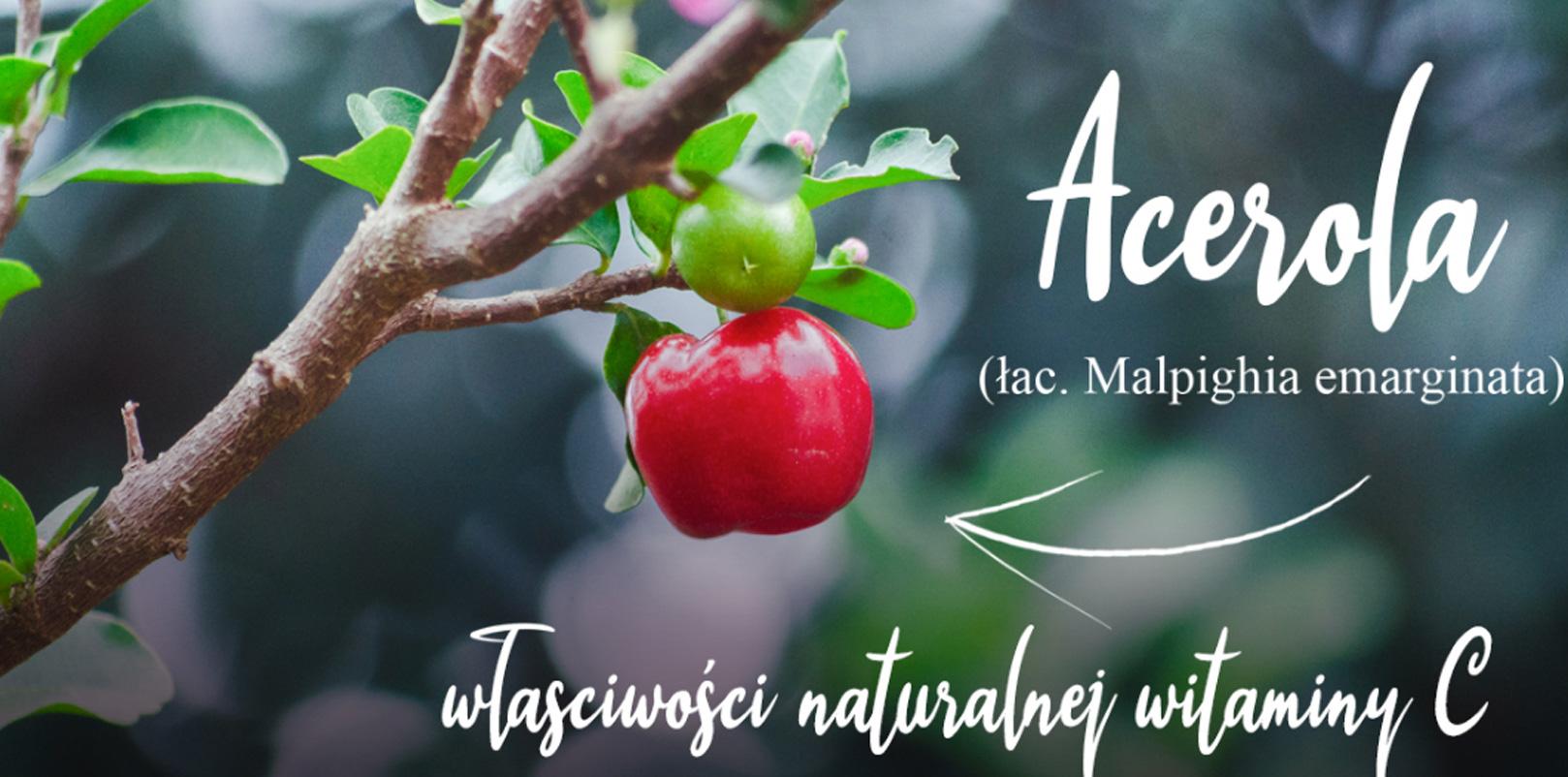 Acerola - działanie naturalnej witaminy C